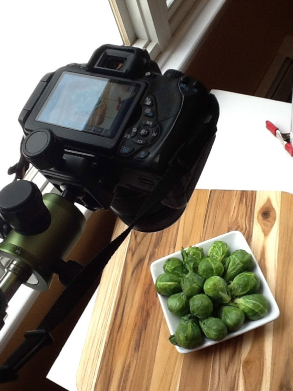 Behind-the-Camera-Roasted-Brussel-Sprouts-with-Garlic-and-Lemon-1