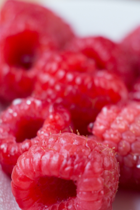 Raspberry-aFood-Photo (1)